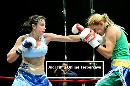 Judi Tinju Online